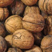 Zinek v potravinách: co ho obsahuje